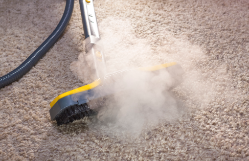 carpet cleaning alaska
